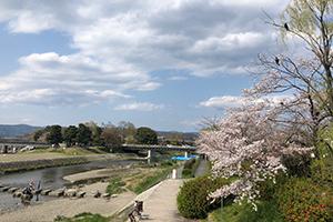 京都府京都市の別れさせ工作事例